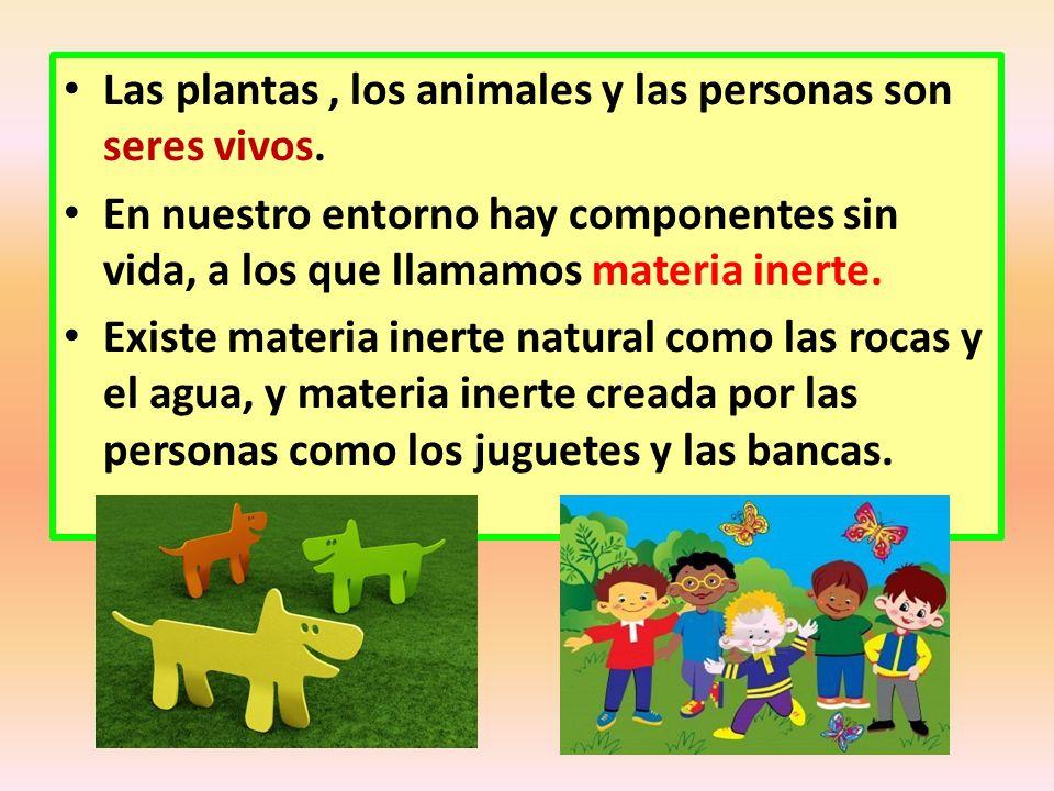 Las plantas , los animales y las personas son seres vivos.