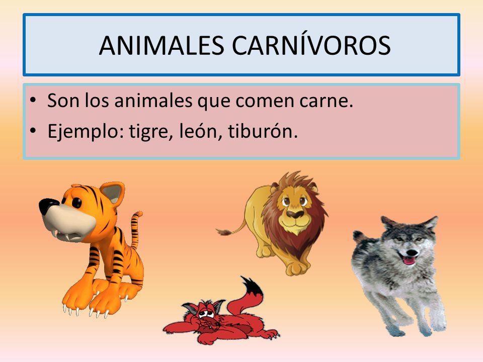 ANIMALES CARNÍVOROS Son los animales que comen carne.