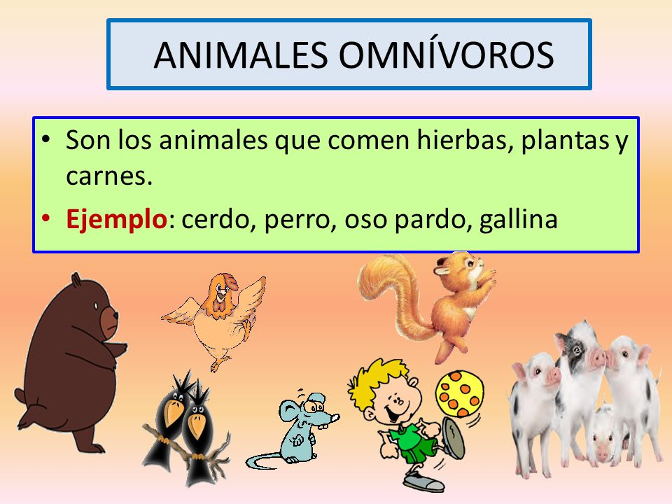ANIMALES OMNÍVOROS Son los animales que comen hierbas, plantas y carnes.