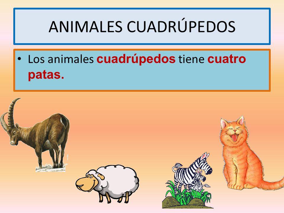 ANIMALES CUADRÚPEDOS Los animales cuadrúpedos tiene cuatro patas.