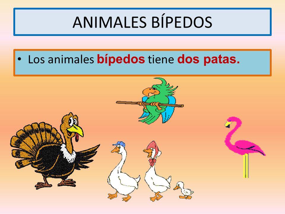 ANIMALES BÍPEDOS Los animales bípedos tiene dos patas.