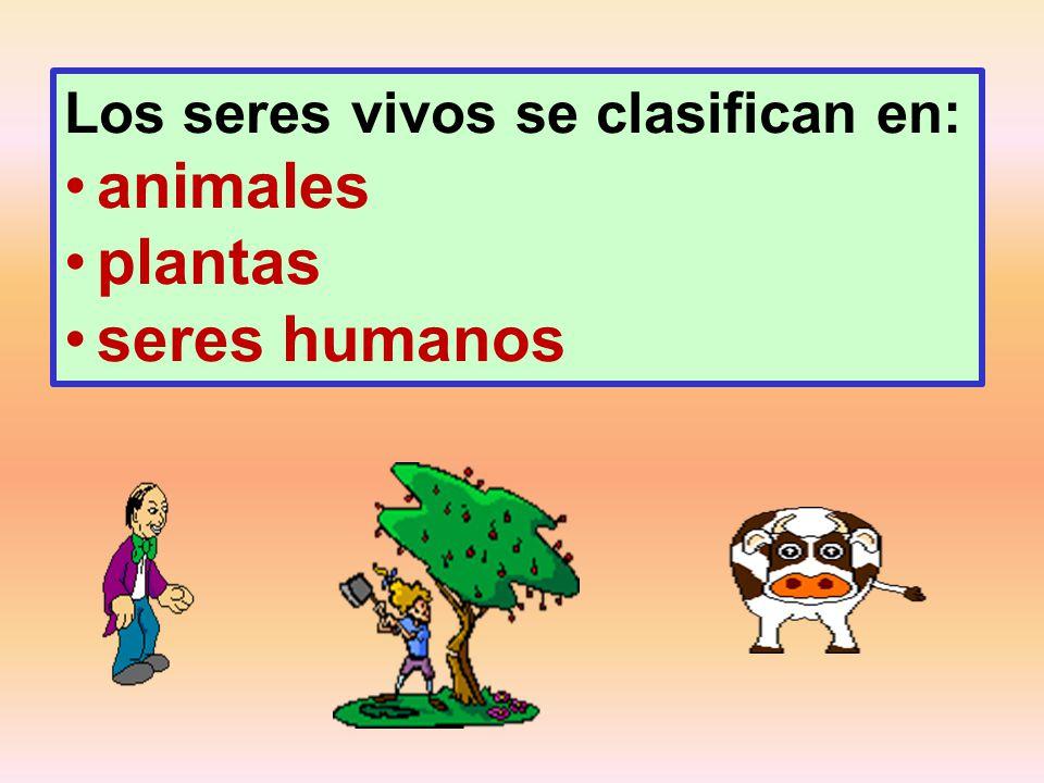 Los seres vivos se clasifican en: