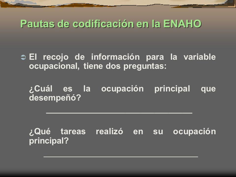 Pautas de codificación en la ENAHO
