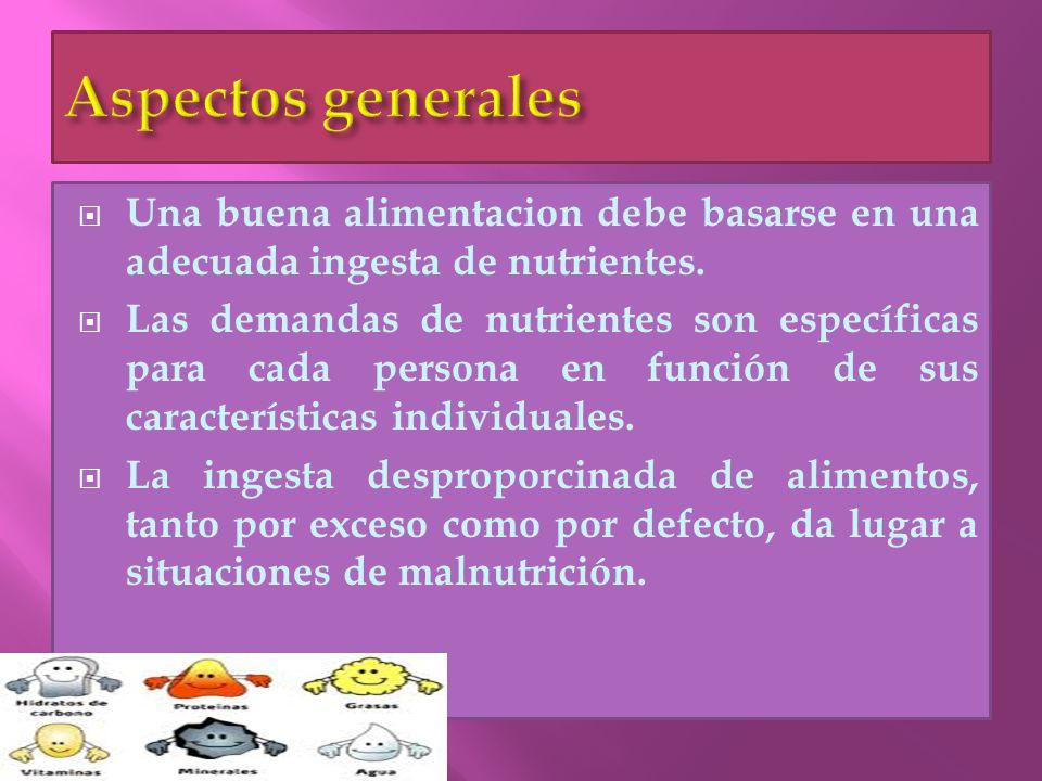 Aspectos generales Una buena alimentacion debe basarse en una adecuada ingesta de nutrientes.