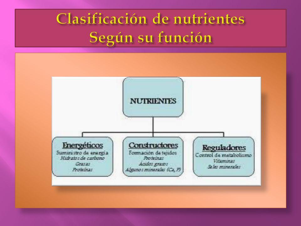 Clasificación de nutrientes Según su función