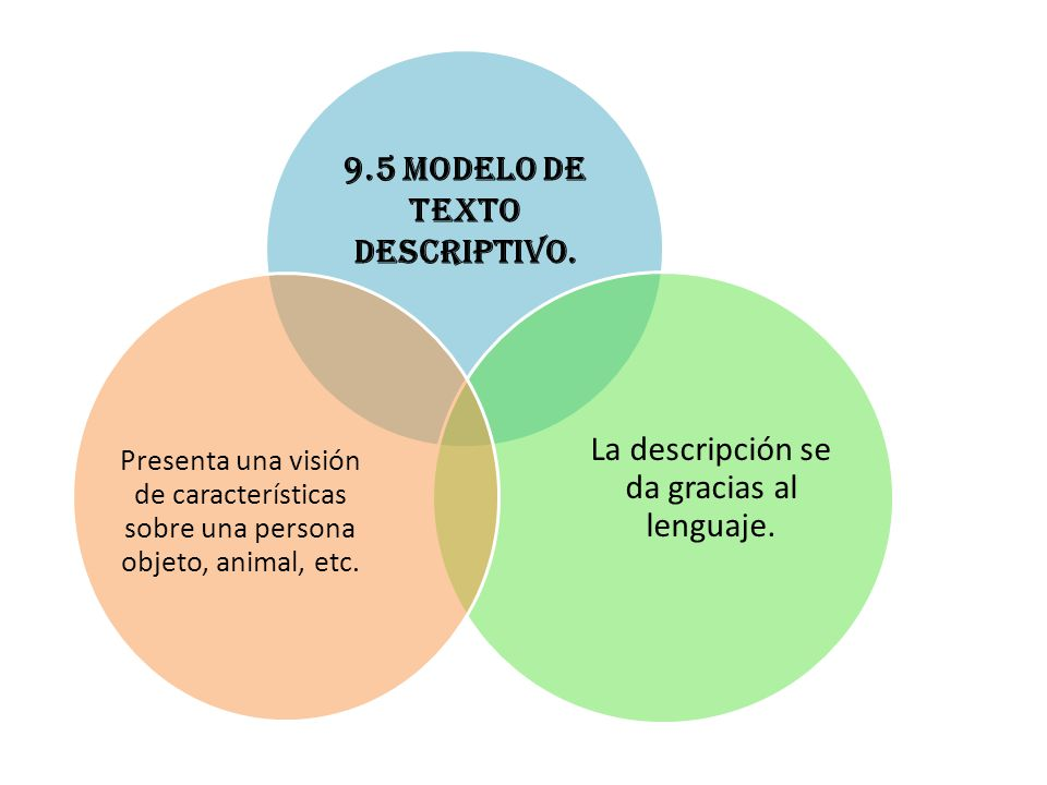 9.5 Modelo de texto descriptivo.