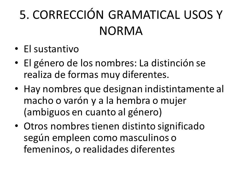 5. CORRECCIÓN GRAMATICAL USOS Y NORMA