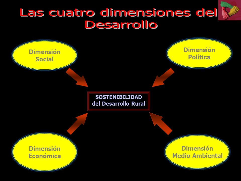 Las cuatro dimensiones del