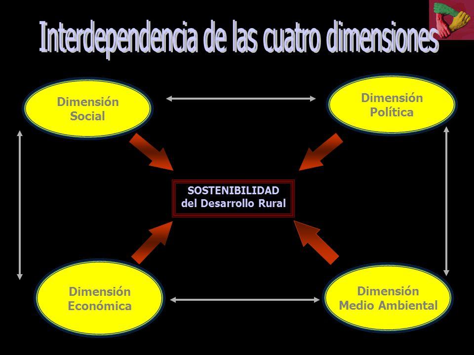 Interdependencia de las cuatro dimensiones