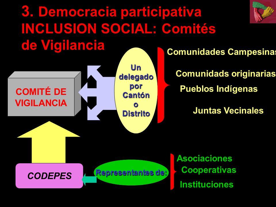 3. Democracia participativa INCLUSION SOCIAL: Comités de Vigilancia