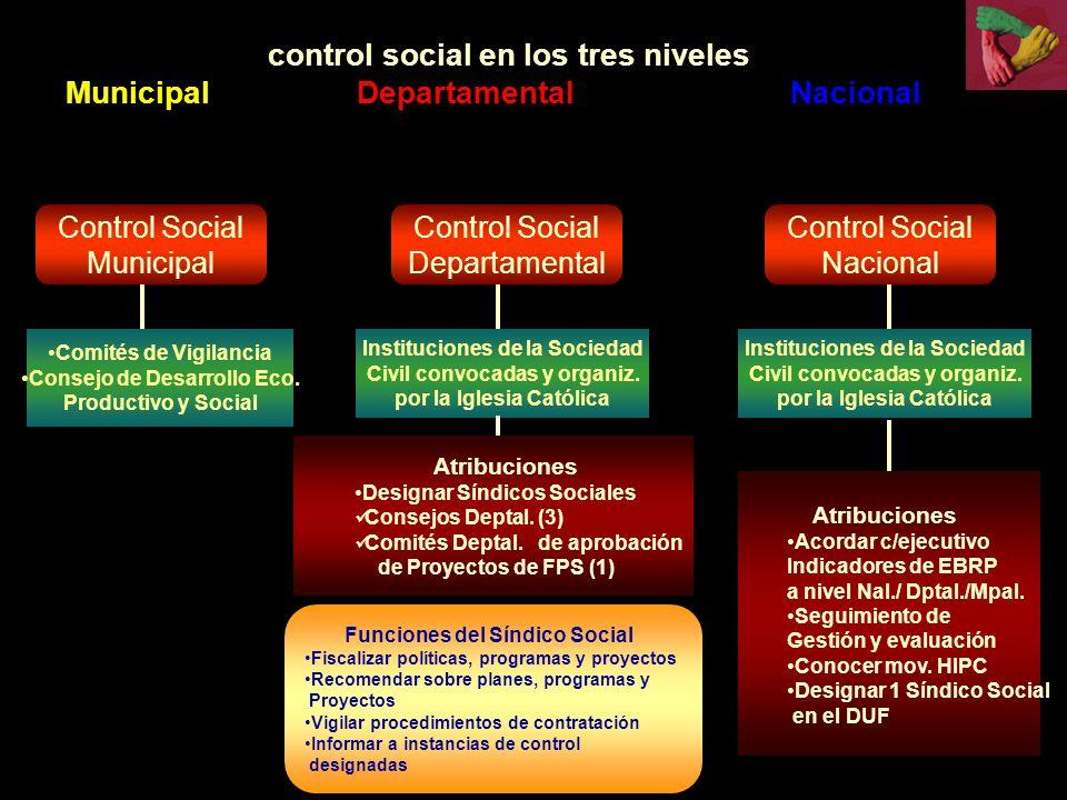 control social en los tres niveles