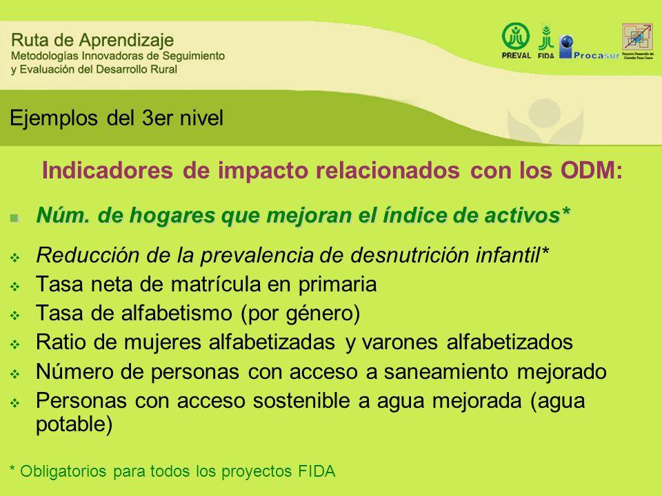 Indicadores de impacto relacionados con los ODM: