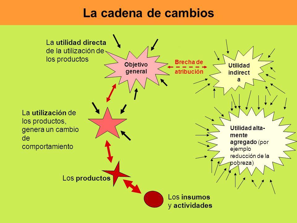 La cadena de cambios La utilidad directa de la utilización de los productos. Objetivo general. Utilidad indirect a.