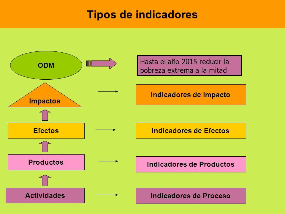Tipos de indicadores ODM