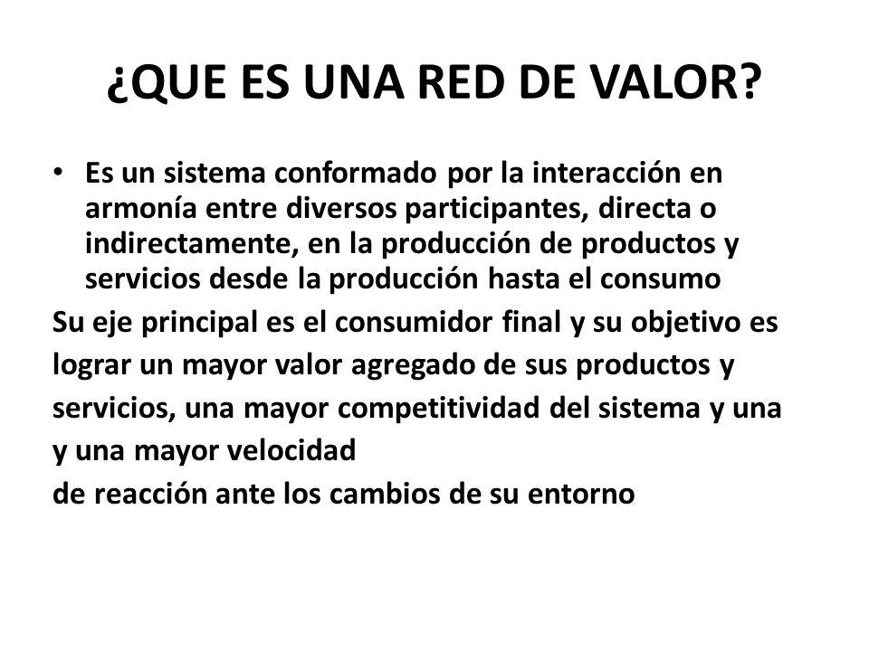 ¿QUE ES UNA RED DE VALOR