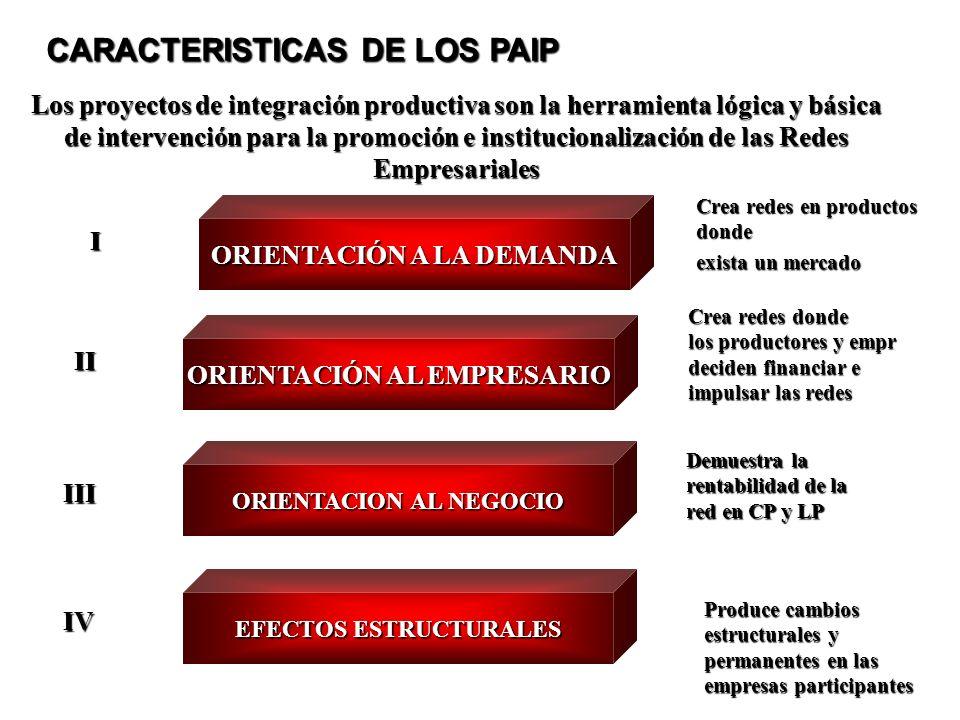 CARACTERISTICAS DE LOS PAIP
