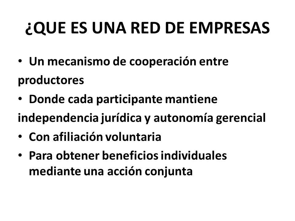 ¿QUE ES UNA RED DE EMPRESAS