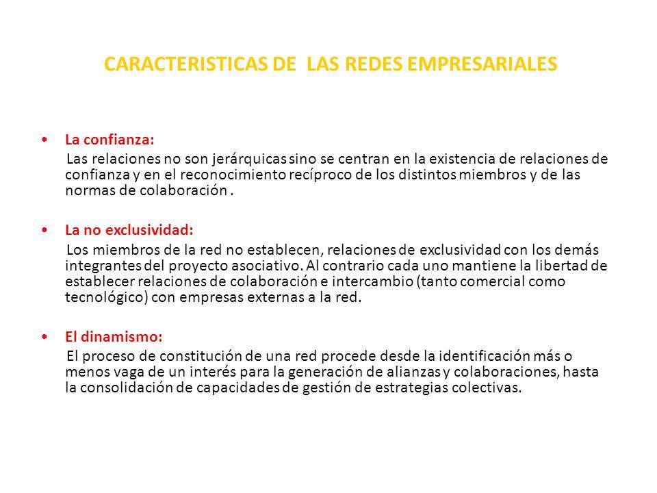 CARACTERISTICAS DE LAS REDES EMPRESARIALES