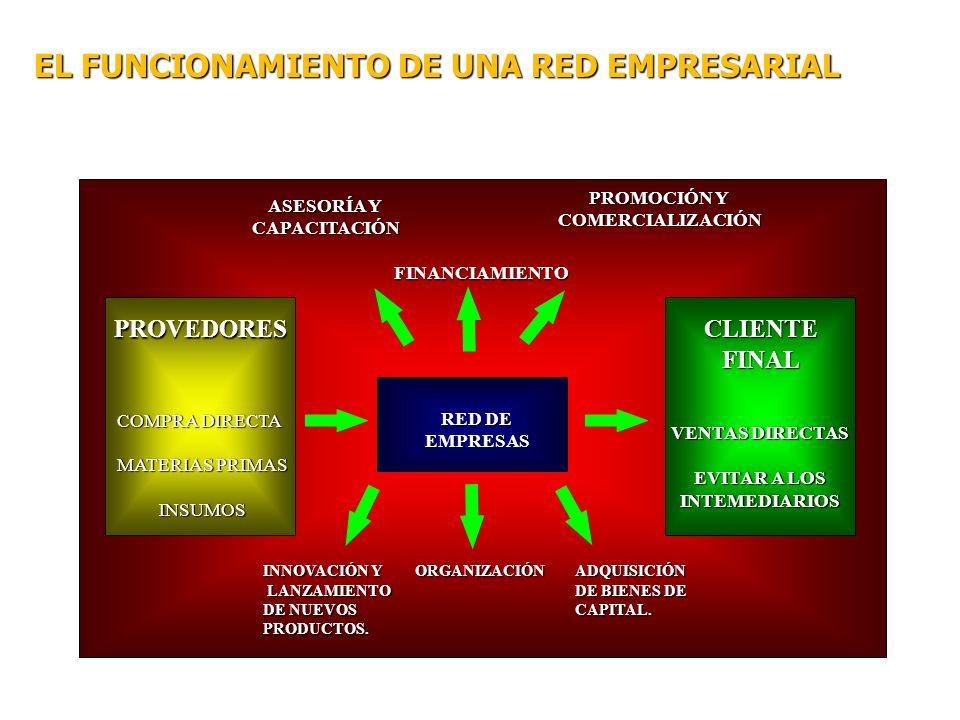 EL FUNCIONAMIENTO DE UNA RED EMPRESARIAL