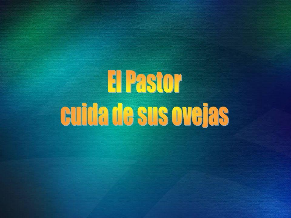 El Pastor cuida de sus ovejas