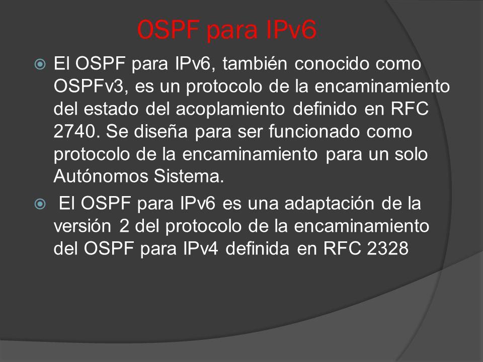 Hermosa Anatomía De Un Protocolo De Internet De Encaminamiento ...
