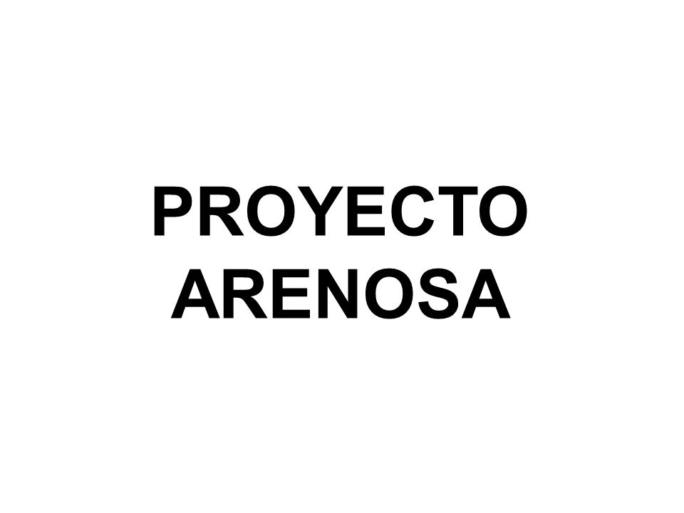 PROYECTO ARENOSA