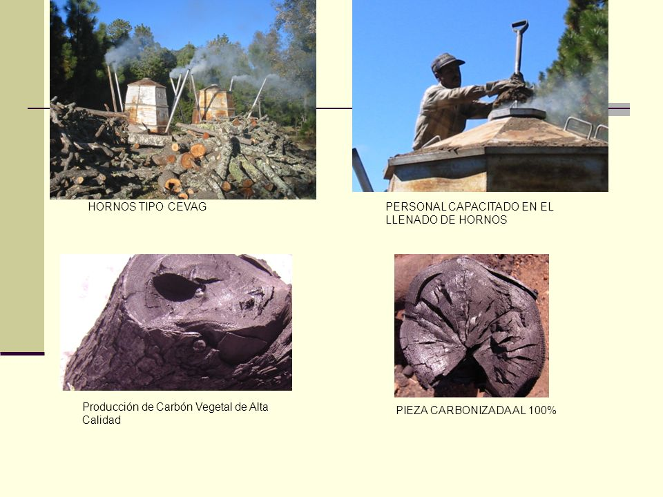 HORNOS TIPO CEVAG PERSONAL CAPACITADO EN EL LLENADO DE HORNOS. Producción de Carbón Vegetal de Alta Calidad.