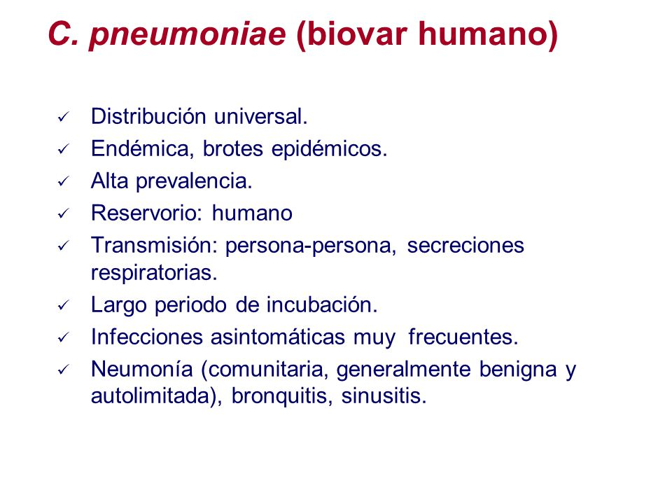 C. pneumoniae (biovar humano)