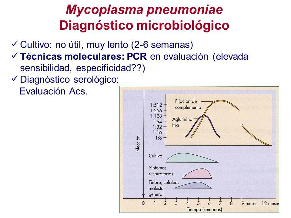 Mycoplasma pneumoniae Diagnóstico microbiológico