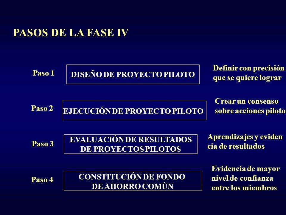 PASOS DE LA FASE IV Definir con precisión Paso 1