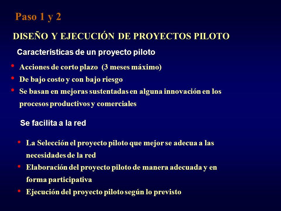 DISEÑO Y EJECUCIÓN DE PROYECTOS PILOTO