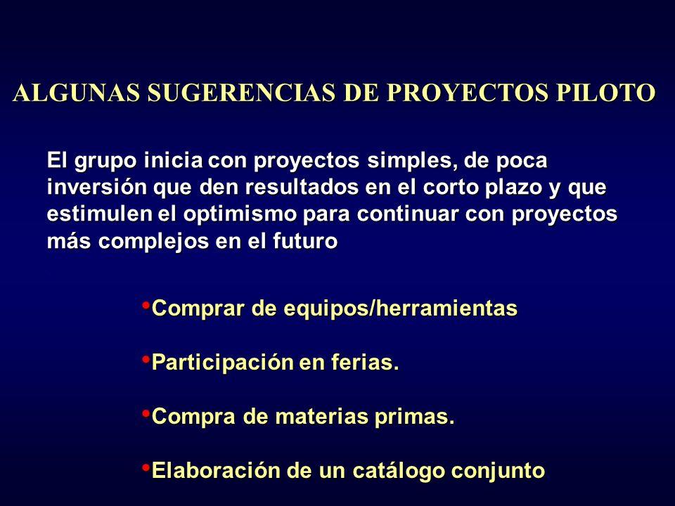 ALGUNAS SUGERENCIAS DE PROYECTOS PILOTO