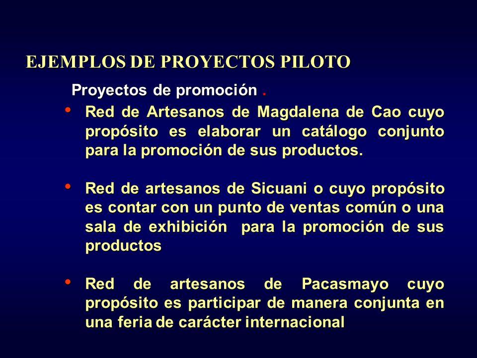 EJEMPLOS DE PROYECTOS PILOTO