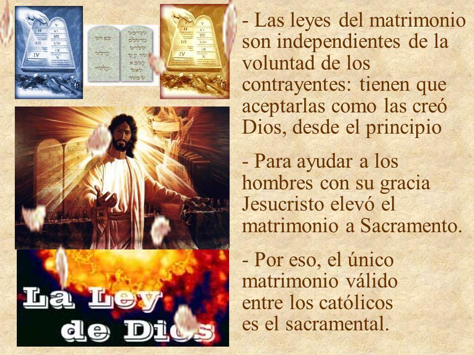 - Las leyes del matrimonio son independientes de la voluntad de los contrayentes: tienen que aceptarlas como las creó Dios, desde el principio