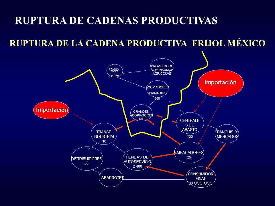 RUPTURA DE LA CADENA PRODUCTIVA FRIJOL MÉXICO
