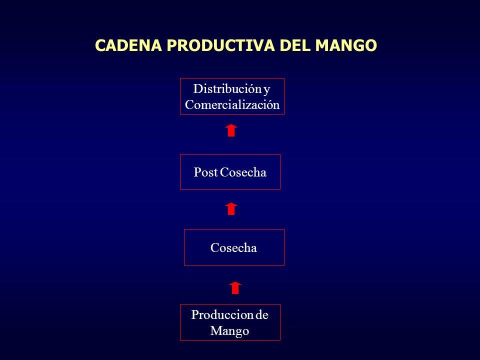 CADENA PRODUCTIVA DEL MANGO