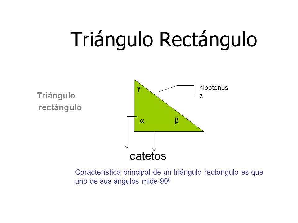 Triángulo Rectángulo catetos rectángulo Triángulo   