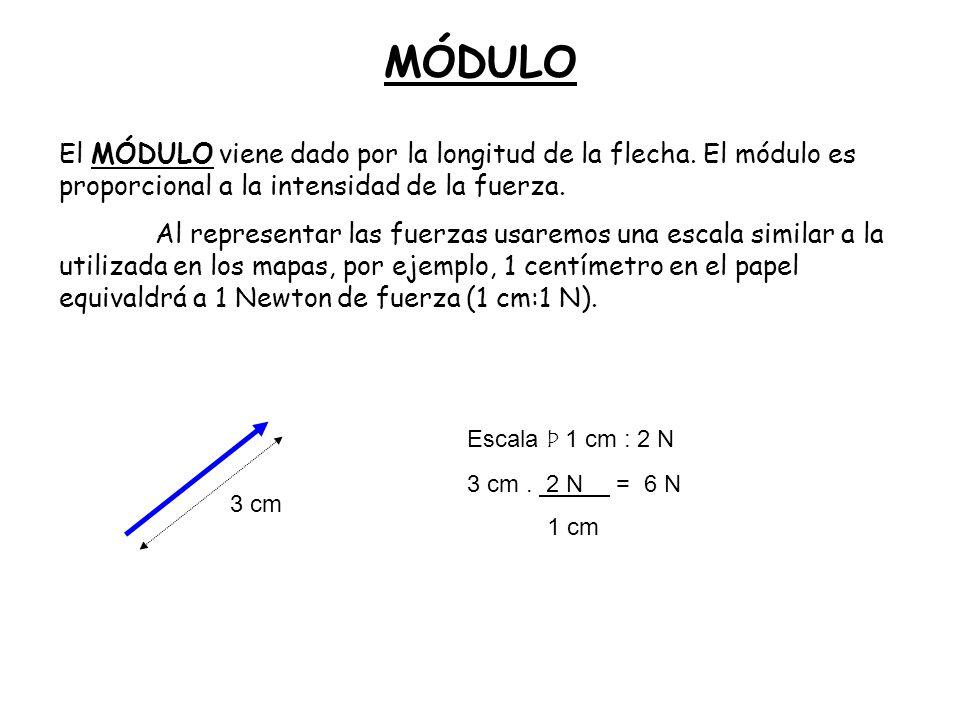 MÓDULO El MÓDULO viene dado por la longitud de la flecha. El módulo es proporcional a la intensidad de la fuerza.