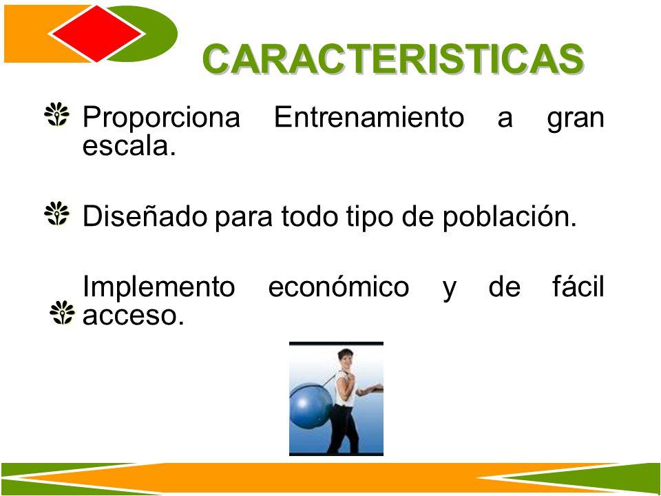 CARACTERISTICAS Proporciona Entrenamiento a gran escala.
