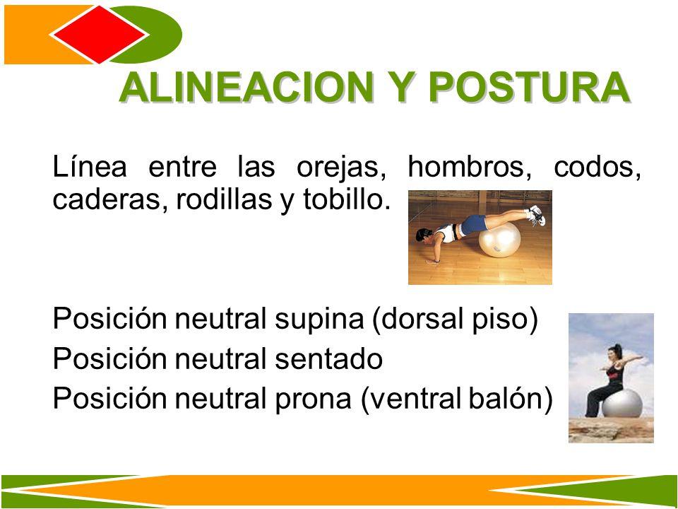 ALINEACION Y POSTURA Línea entre las orejas, hombros, codos, caderas, rodillas y tobillo. Posición neutral supina (dorsal piso)
