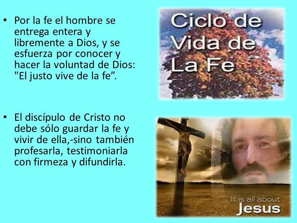 Por la fe el hombre se entrega entera y libremente a Dios, y se esfuerza por conocer y hacer la voluntad de Dios: El justo vive de la fe .