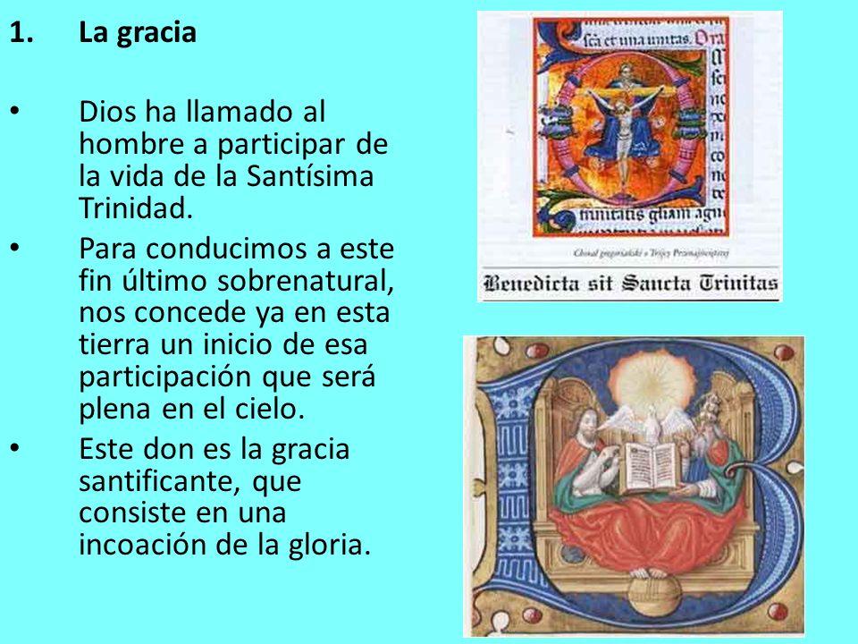 La gracia Dios ha llamado al hombre a participar de la vida de la Santísima Trinidad.