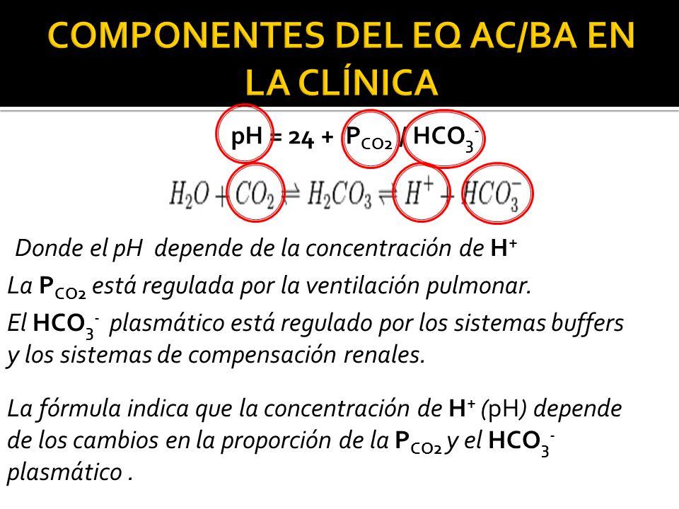 COMPONENTES DEL EQ AC/BA EN LA CLÍNICA