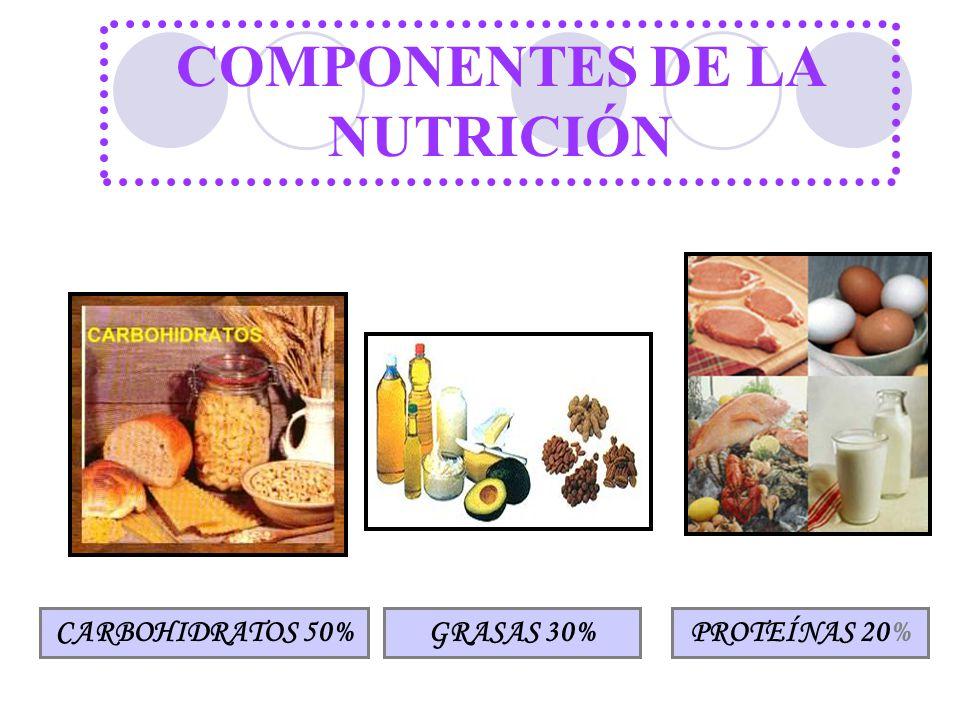 COMPONENTES DE LA NUTRICIÓN