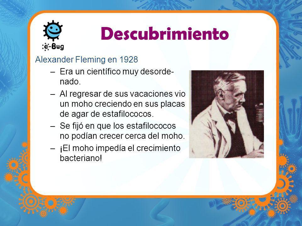 Descubrimiento Alexander Fleming en 1928