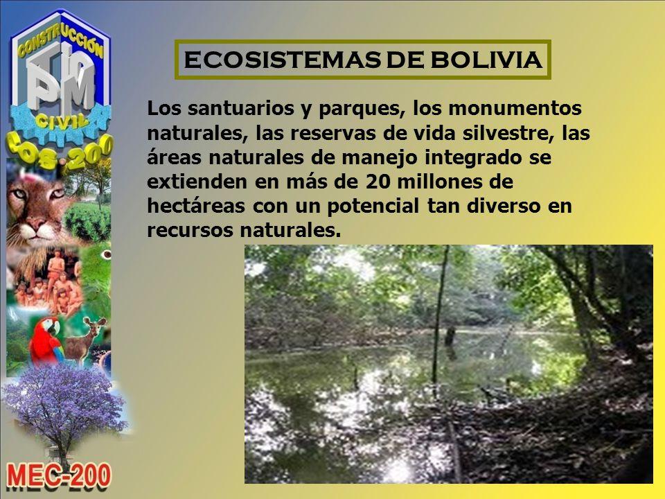 ECOSISTEMAS DE BOLIVIA
