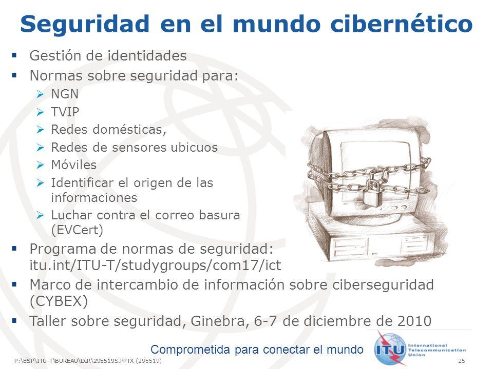 Seguridad en el mundo cibernético