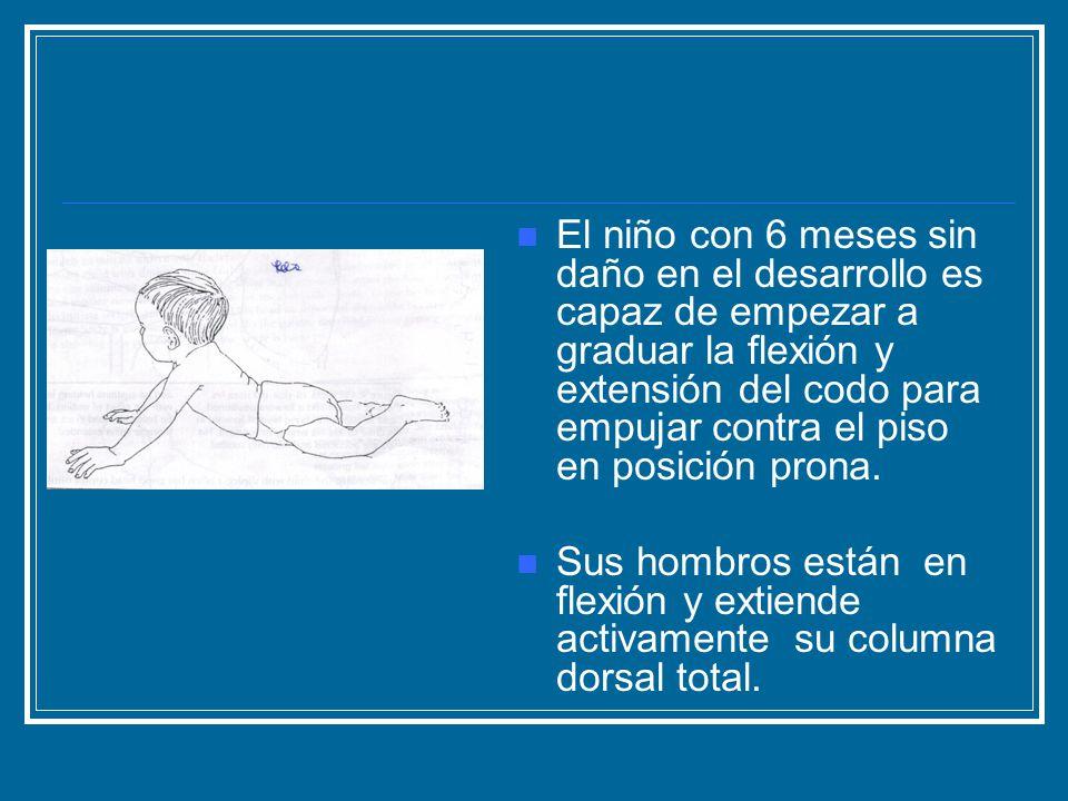 El niño con 6 meses sin daño en el desarrollo es capaz de empezar a graduar la flexión y extensión del codo para empujar contra el piso en posición prona.