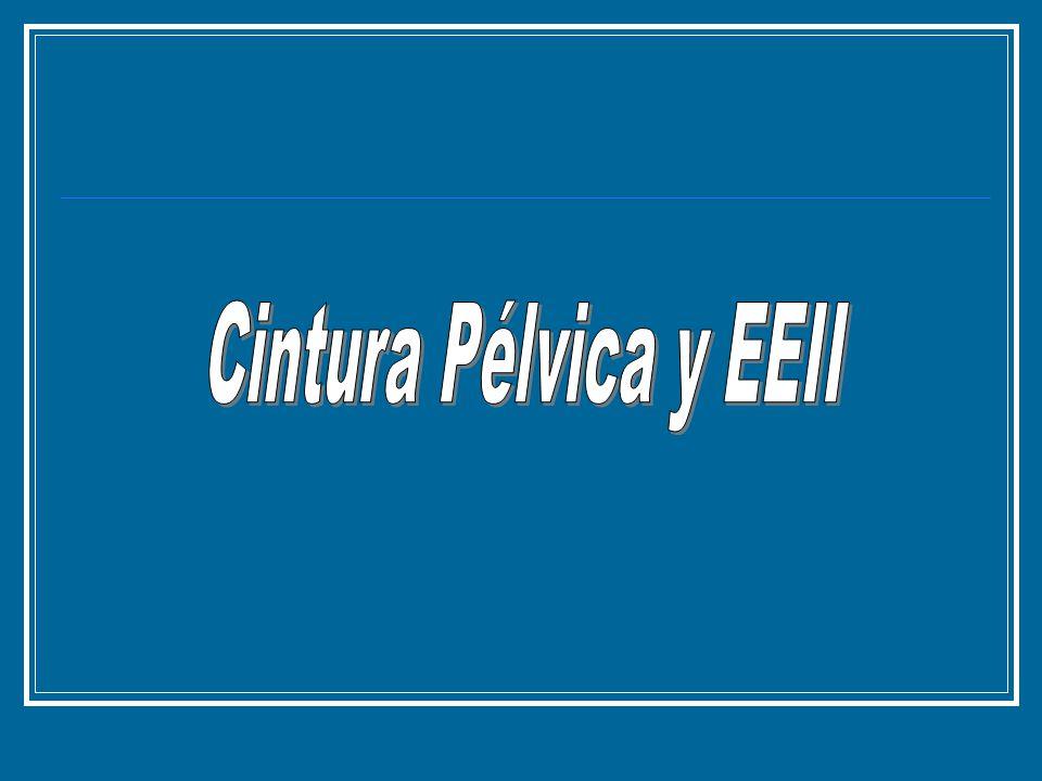 Cintura Pélvica y EEII