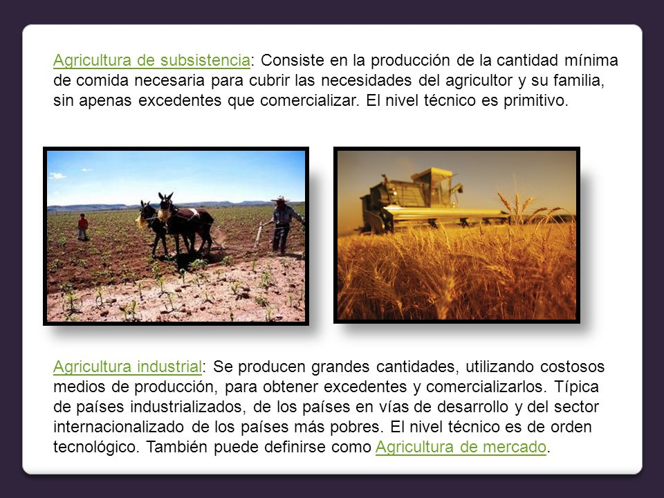 Agricultura de subsistencia: Consiste en la producción de la cantidad mínima de comida necesaria para cubrir las necesidades del agricultor y su familia, sin apenas excedentes que comercializar. El nivel técnico es primitivo.